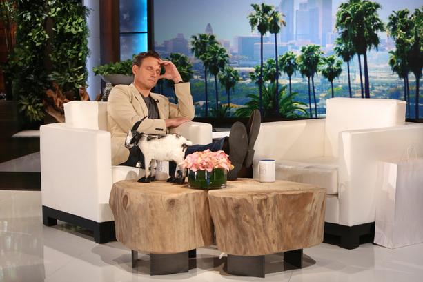 TG on Ellen-3